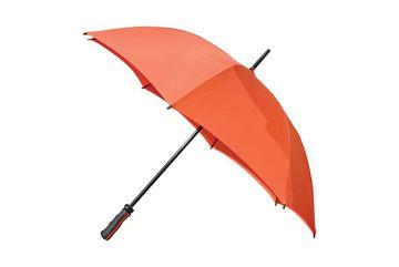 Parapluie Street Flower